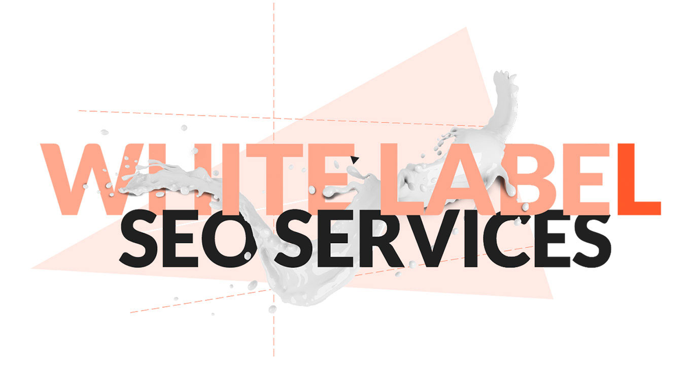 Everything You Need To Know About While Label Seo Services